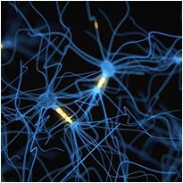Biohacking Neurons